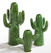 Cactus Vases from £29